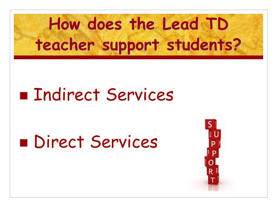 How does the Lead TD teacher support students? Indirect Services Direct Services