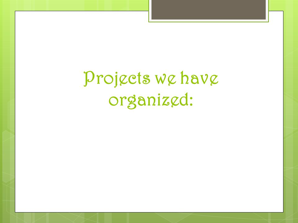 Projects we have organized: