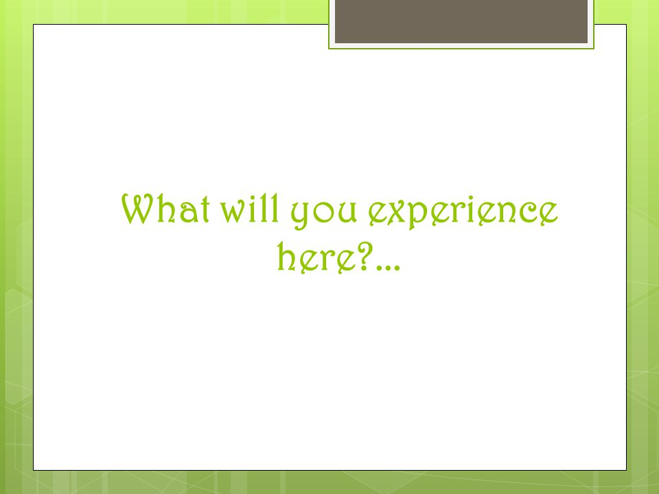 What will you experience here ...