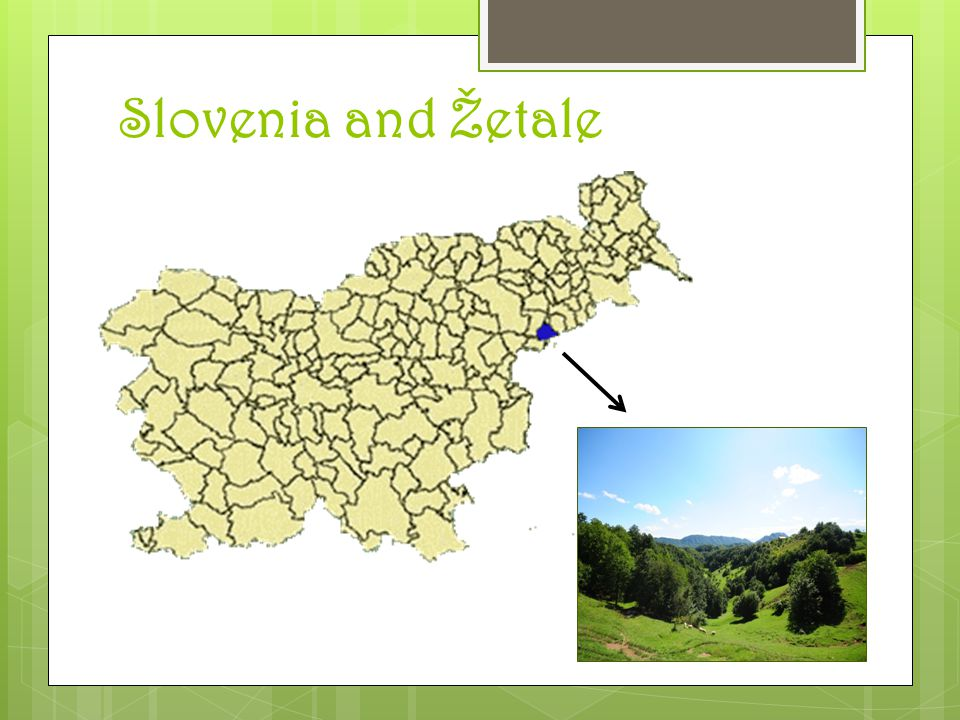 Žetale  North-east part of Slovenia  Population: 1364, 38 km2; forest industry, trade, repairs of motor vehicles and products of local consumption, civil engineering, viticulture, fruit growing  South-west part of Haloze, forest on 60% of surface, area of hills