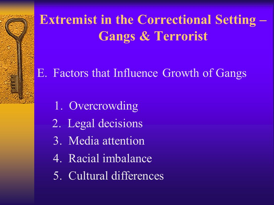 Extremist in the Correctional Setting – Gangs & Terrorist E.Factors that Influence Growth of Gangs 1.