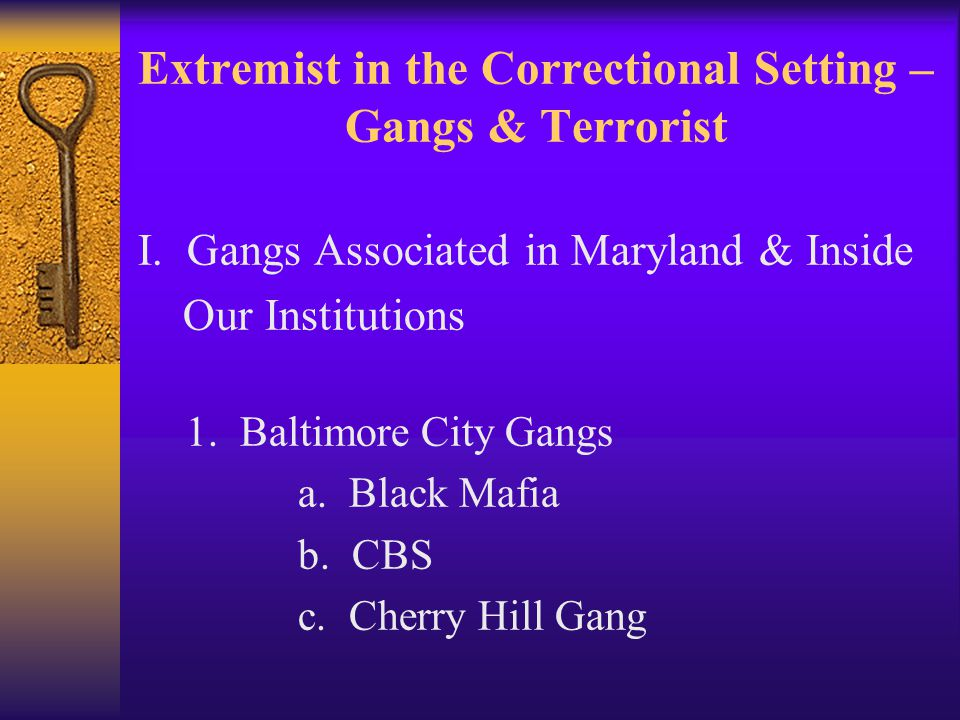 Extremist in the Correctional Setting – Gangs & Terrorist I.