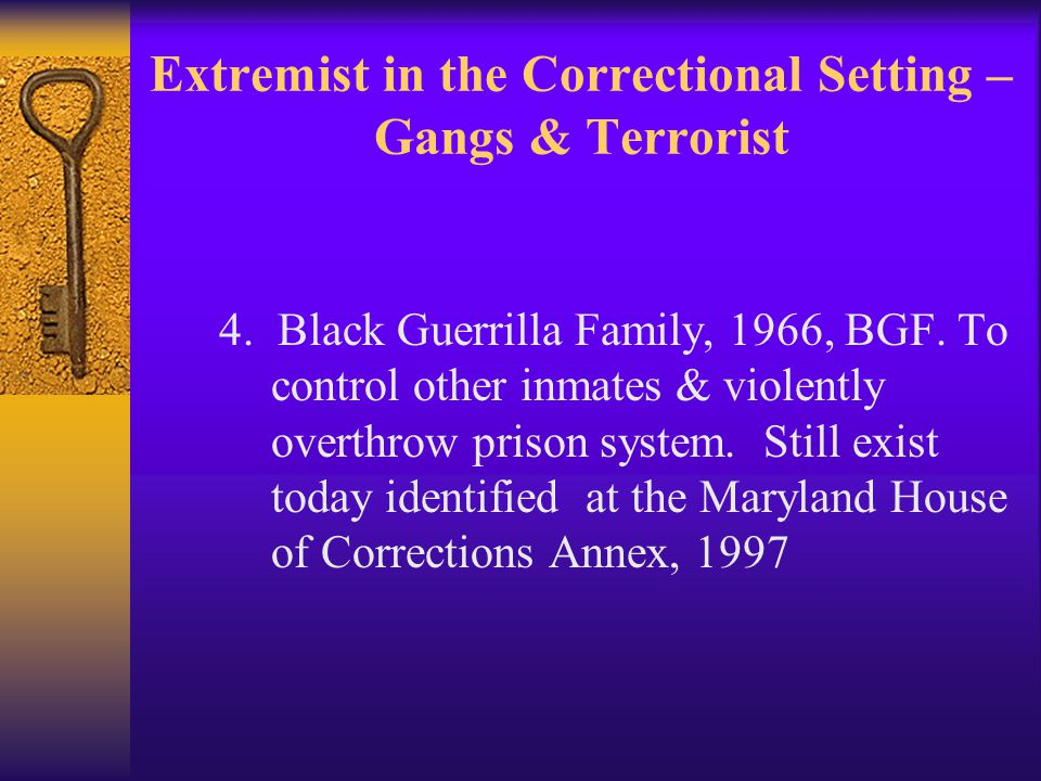 Extremist in the Correctional Setting – Gangs & Terrorist 4.