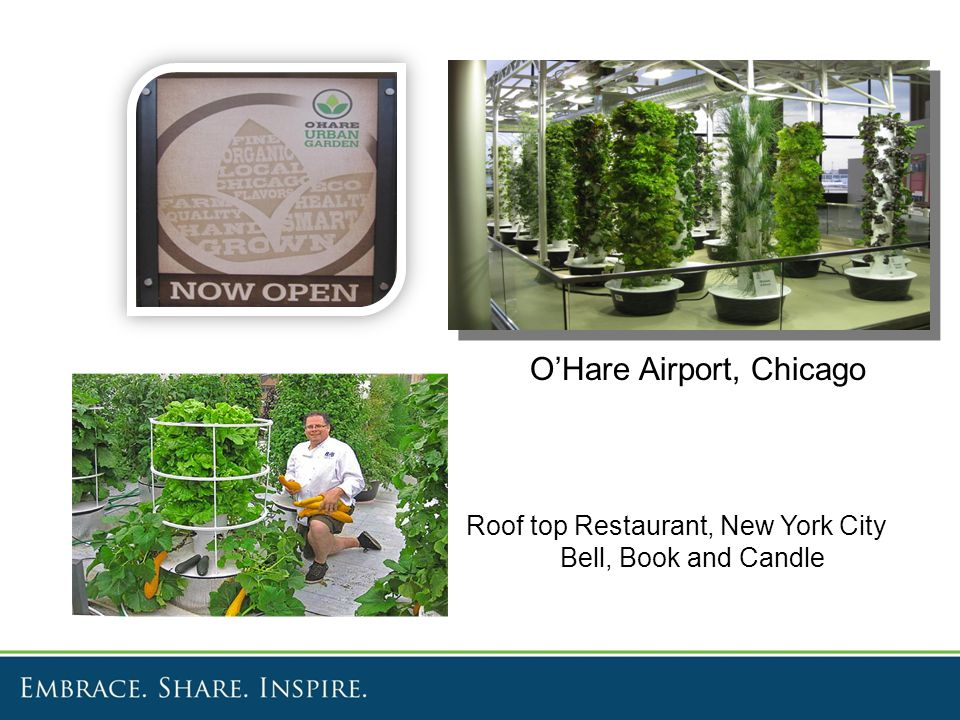 O'Hare Airport, Chicago Roof top Restaurant, New York City Bell, Book and Candle