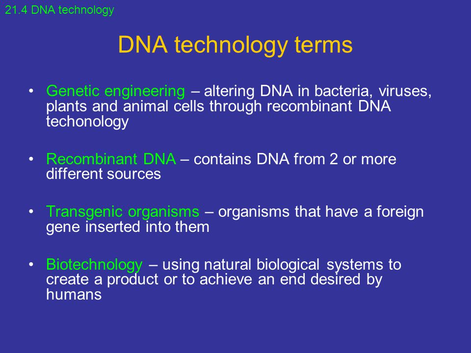 DNA technology terms Genetic engineering – altering DNA in bacteria, viruses, plants and animal cells through recombinant DNA techonology Recombinant DNA – contains DNA from 2 or more different sources Transgenic organisms – organisms that have a foreign gene inserted into them Biotechnology – using natural biological systems to create a product or to achieve an end desired by humans 21.4 DNA technology