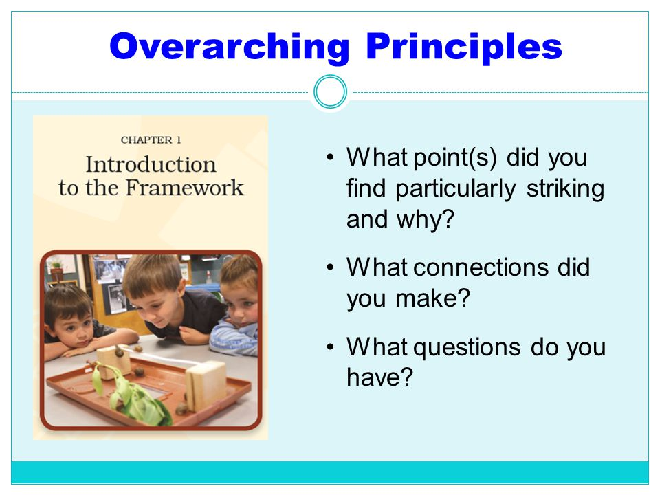 Overarching Principles What point(s) did you find particularly striking and why? What connections did you make? What questions do you have?