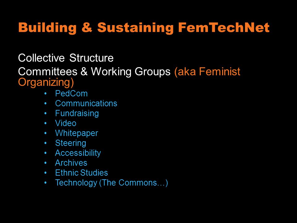 Building & Sustaining FemTechNet Collective Structure Committees & Working Groups (aka Feminist Organizing) PedCom Communications Fundraising Video Whitepaper Steering Accessibility Archives Ethnic Studies Technology (The Commons…)