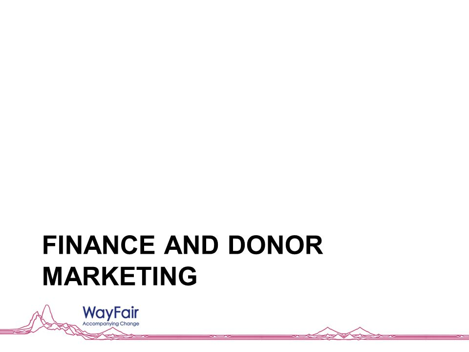 FINANCE AND DONOR MARKETING