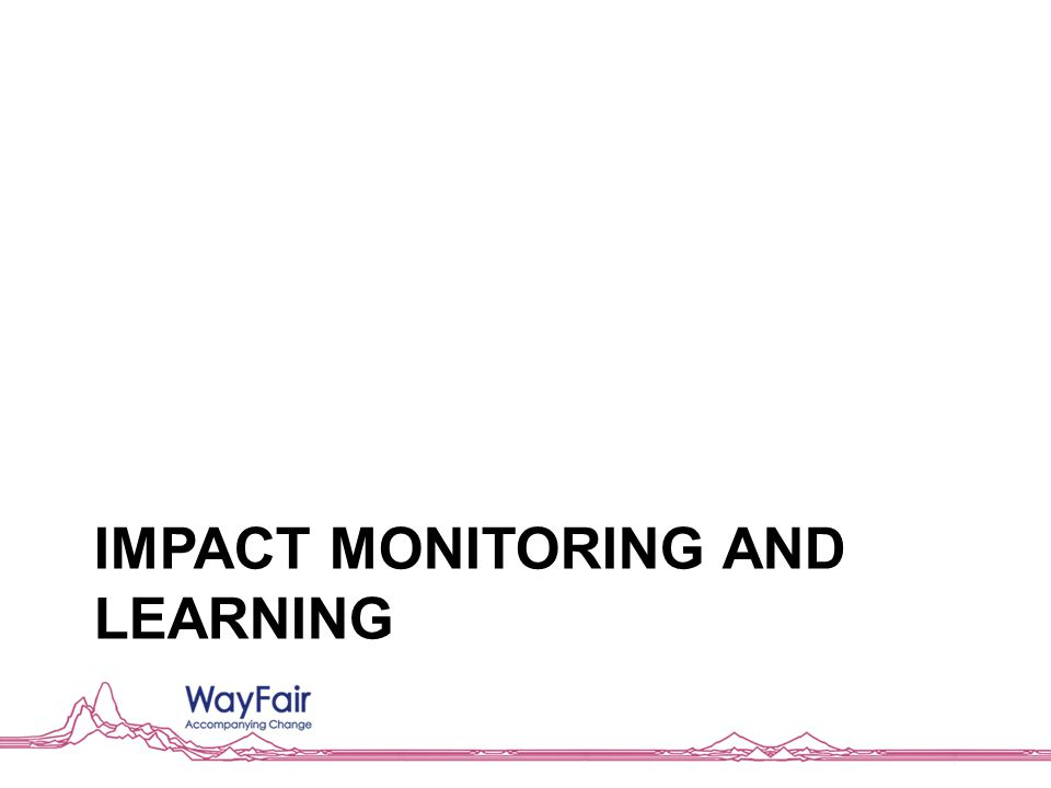 IMPACT MONITORING AND LEARNING