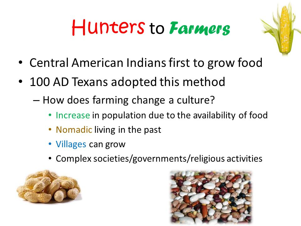 Hunters to Farmers Central American Indians first to grow food 100 AD Texans adopted this method – How does farming change a culture.