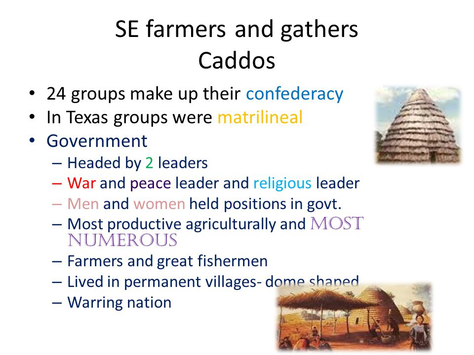 SE farmers and gathers Caddos 24 groups make up their confederacy In Texas groups were matrilineal Government – Headed by 2 leaders – War and peace leader and religious leader – Men and women held positions in govt.