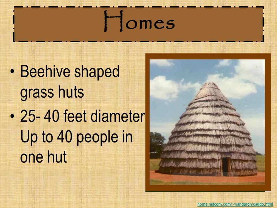 Homes Beehive shaped grass huts 25- 40 feet diameter.