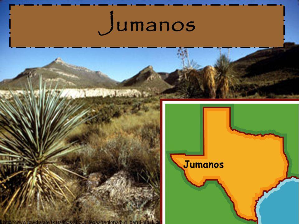 Jumanos http://www.tpwd.state.tx.us/kids/about_texas/regions/big_bend/big_kids/
