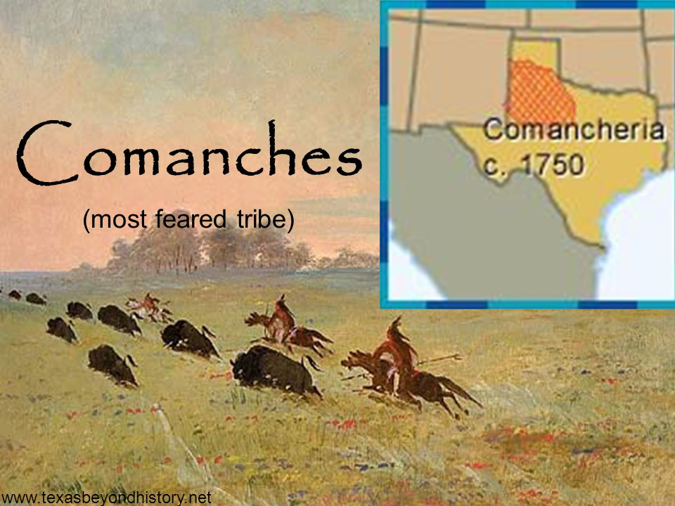 Comanches (most feared tribe) www.texasbeyondhistory.net