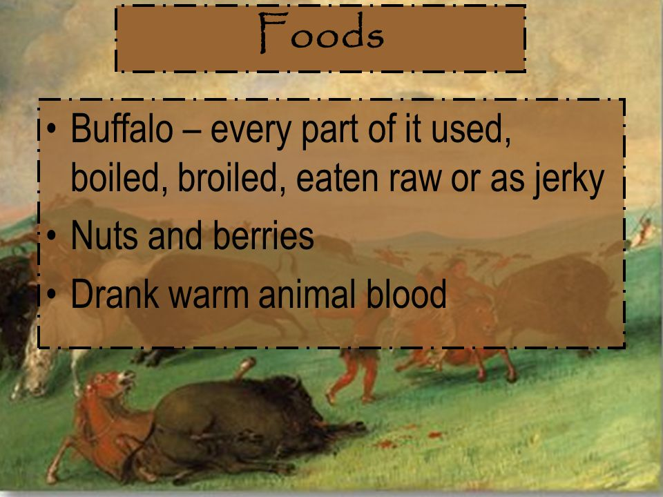 Foods Buffalo – every part of it used, boiled, broiled, eaten raw or as jerky Nuts and berries Drank warm animal blood