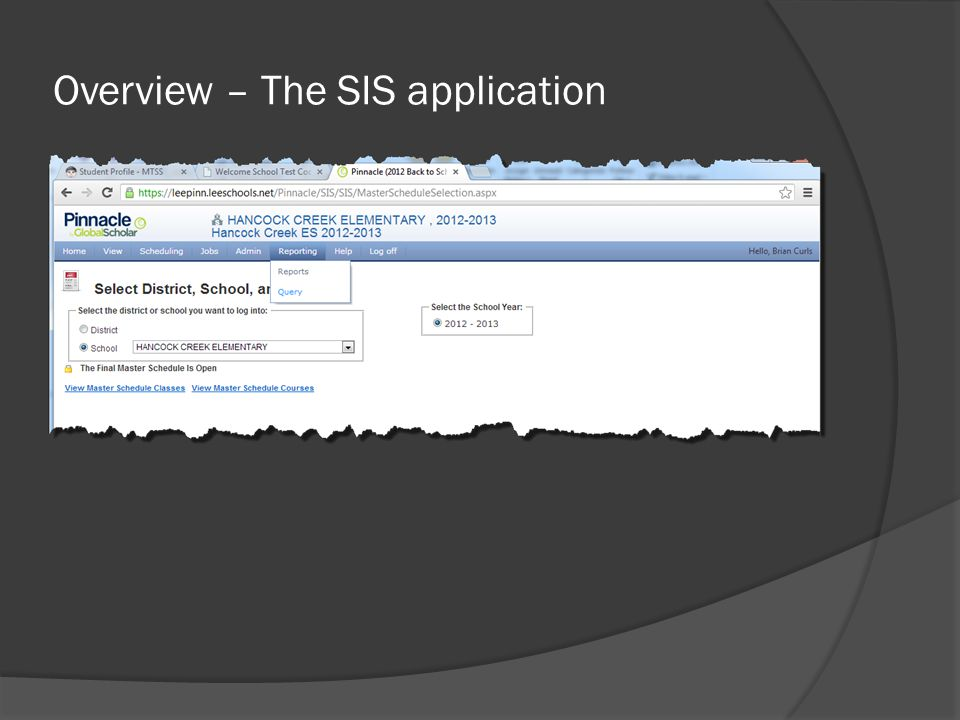 Overview – The SIS application