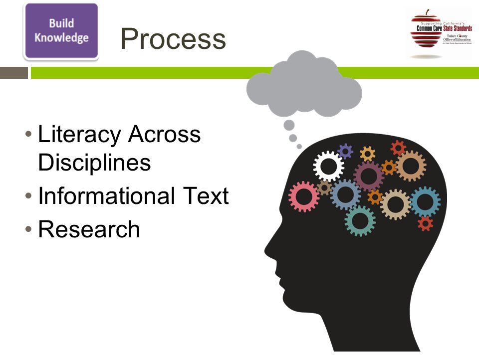 Process Literacy Across Disciplines Informational Text Research