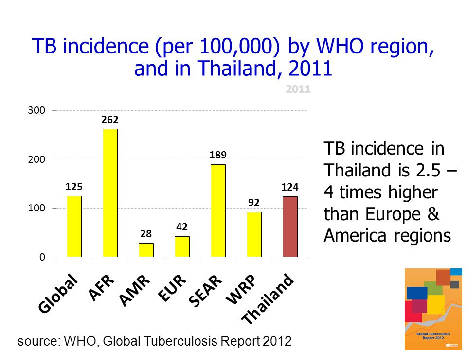 TB incidence (per 100,000) by WHO region, and in Thailand, 2011 source: WHO, Global Tuberculosis Report 2012 TB incidence in Thailand is 2.5 – 4 times