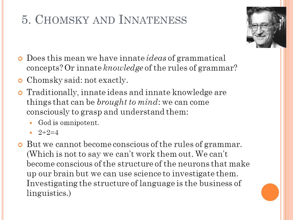 Does this mean we have innate ideas of grammatical concepts.