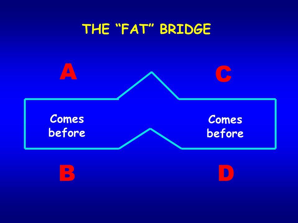 """Comes before A B C D THE """"FAT"""" BRIDGE"""