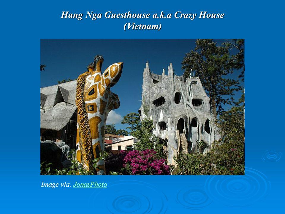 Hang Nga Guesthouse a.k.a Crazy House (Vietnam) Image via: JonasPhotoJonasPhoto
