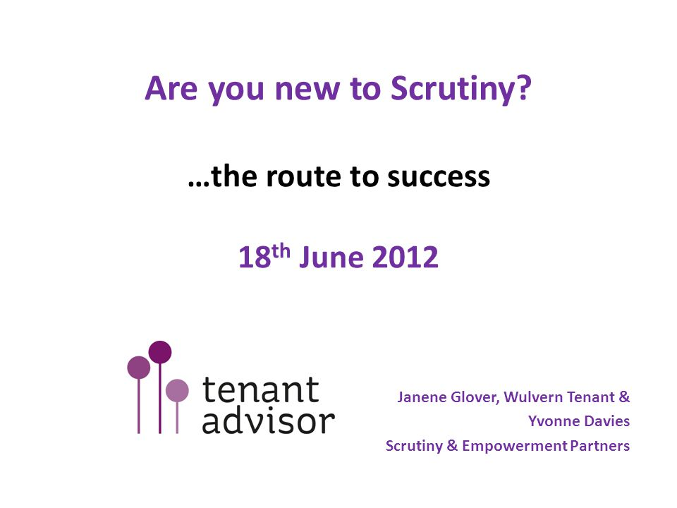 Stages of scrutiny 1.Find out all you can about the service before you start 2.Review documents and hear from staff, 3.Decide what's good.