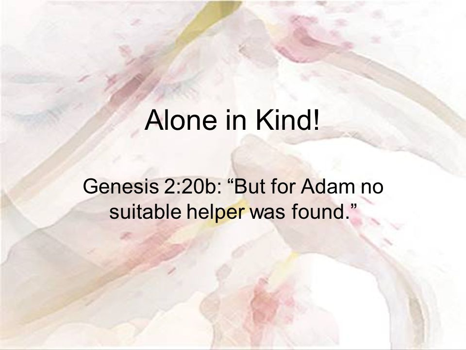 Alone in Kind! Genesis 2:20b: But for Adam no suitable helper was found.
