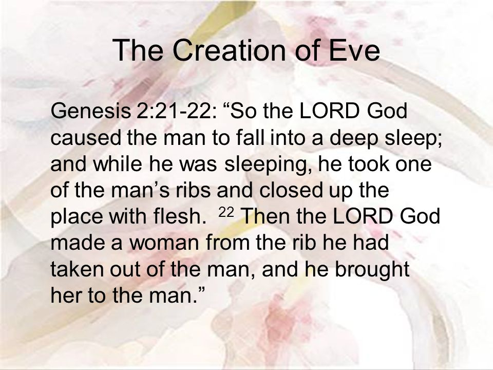 The Creation of Eve Genesis 2:21-22: So the LORD God caused the man to fall into a deep sleep; and while he was sleeping, he took one of the man's ribs and closed up the place with flesh.