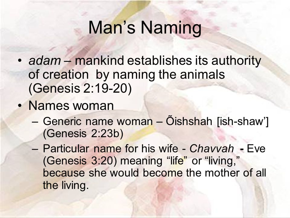 Man's Naming adam – mankind establishes its authority of creation by naming the animals (Genesis 2:19-20) Names woman –Generic name woman – Õishshah [ish-shaw'] (Genesis 2:23b) –Particular name for his wife - Chavvah - Eve (Genesis 3:20) meaning life or living, because she would become the mother of all the living.