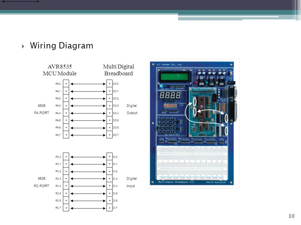 10  Wiring Diagram PA.0 ●● DO.0 PA.1 ●● DO.1 PA.2 ●● DO.2 8535 PA.3 ●● DO.3 Digital PA PORT PA.4 ●● DO.4 Output PA.5 ●● DO.5 PA.6 ●● DO.6 PA.7 ●● DO.7 PC.0 ●● DI.0 PC.1 ●● DI.1 PC.2 ●● DI.2 8535 PC.3 ●● DI.3 Digital PC PORT PC.4 ●● DI.4 Input PC.5 ●● DI.5 PC.6 ●● DI.6 PC.7 ●● DI.7 AVR8535 MCU Module Multi Digital Breadboard