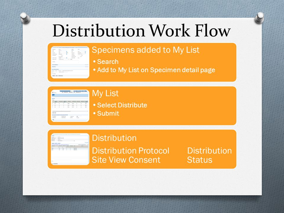 Distribution Work Flow Edit Report Define view Add fields Export Format in Excel Notify PI Call PI Update project