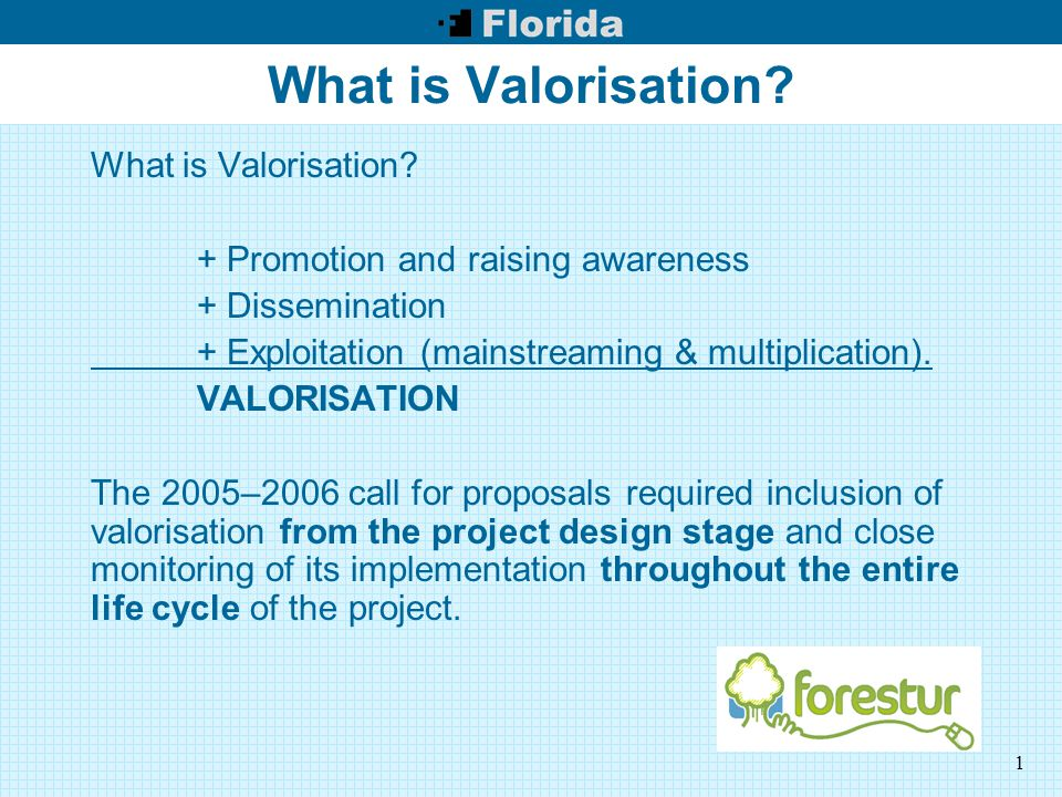 1 What is Valorisation.