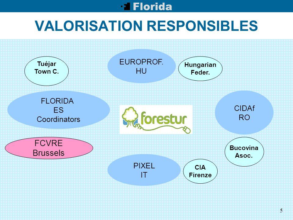 5 VALORISATION RESPONSIBLES EUROPROF. HU PIXEL IT CIDAf RO Tuéjar Town C.