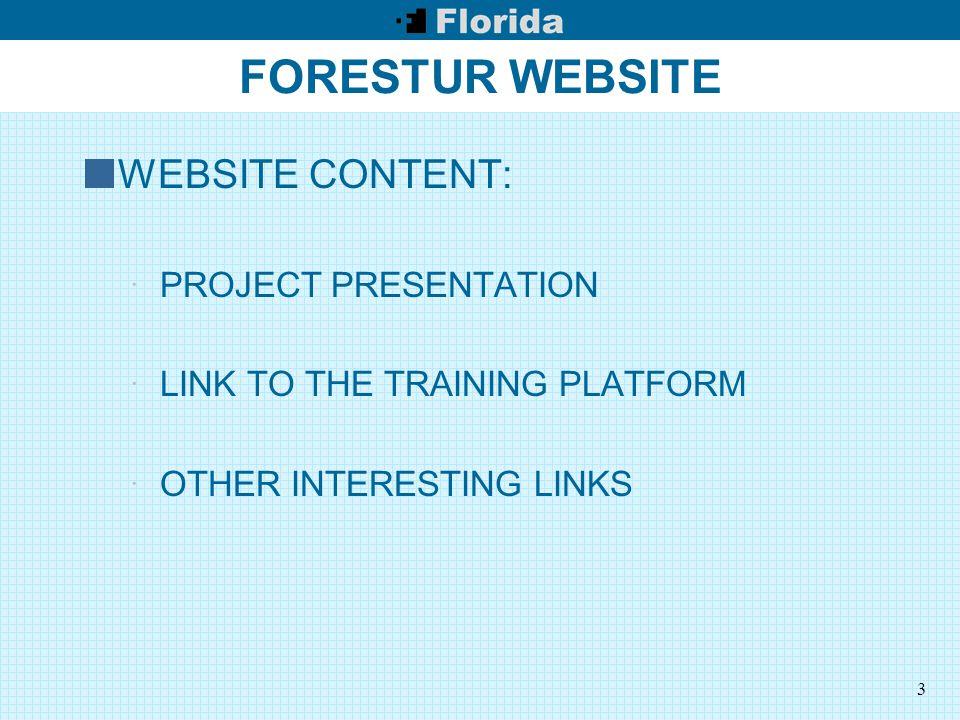 3 FORESTUR WEBSITE WEBSITE CONTENT:  PROJECT PRESENTATION  LINK TO THE TRAINING PLATFORM  OTHER INTERESTING LINKS