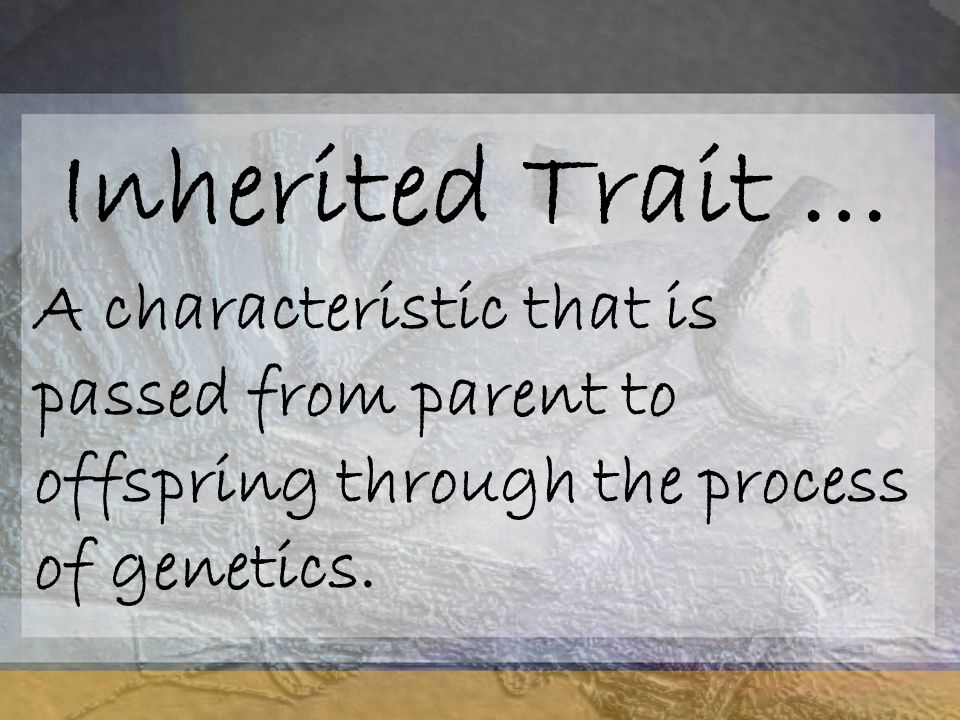 Inherited Trait … A characteristic that is passed from parent to offspring through the process of genetics.