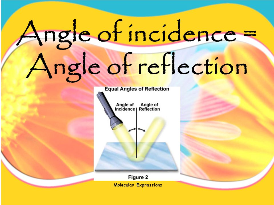 The light that hits an object is called the angle of incidence.