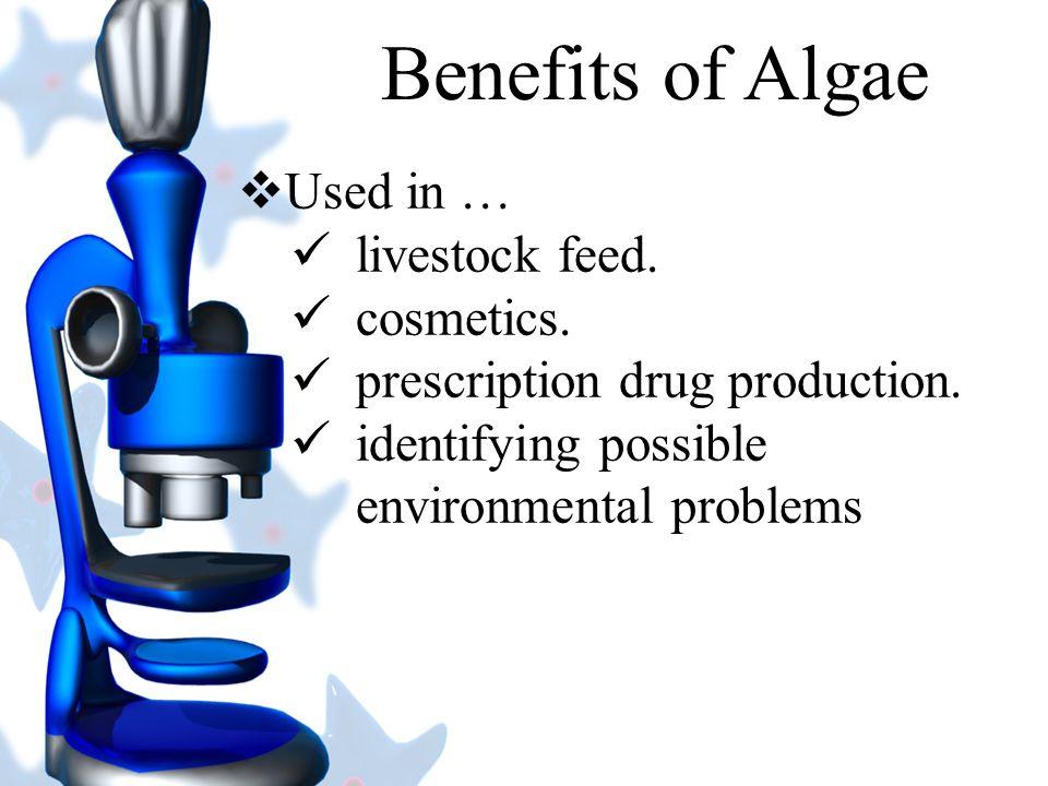 Algae provide over 50% of the oxygen we breathe.