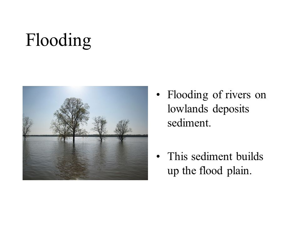Flooding Flooding of rivers on lowlands deposits sediment. This sediment builds up the flood plain.