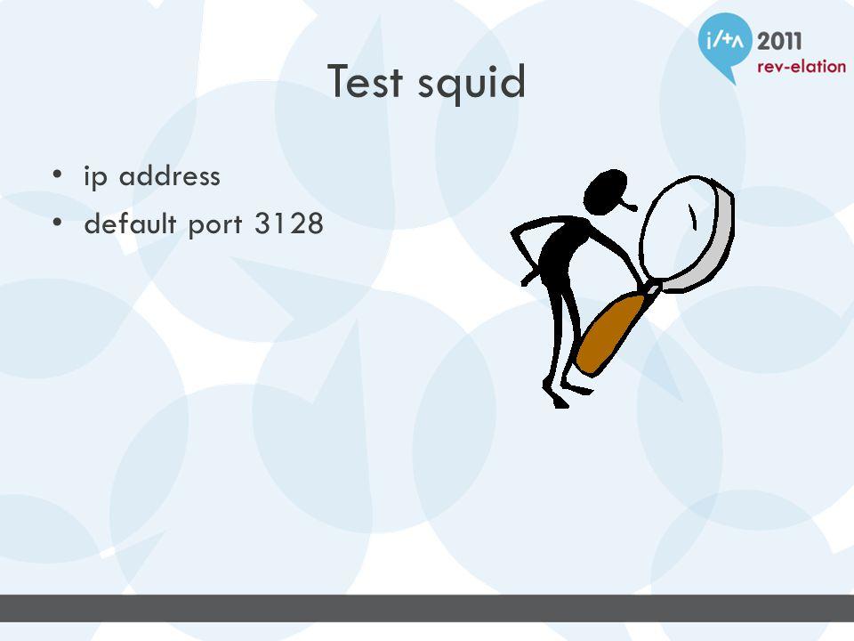 Test squid ip address default port 3128