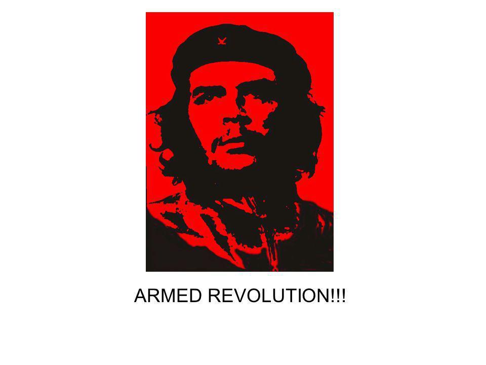 ARMED REVOLUTION!!!