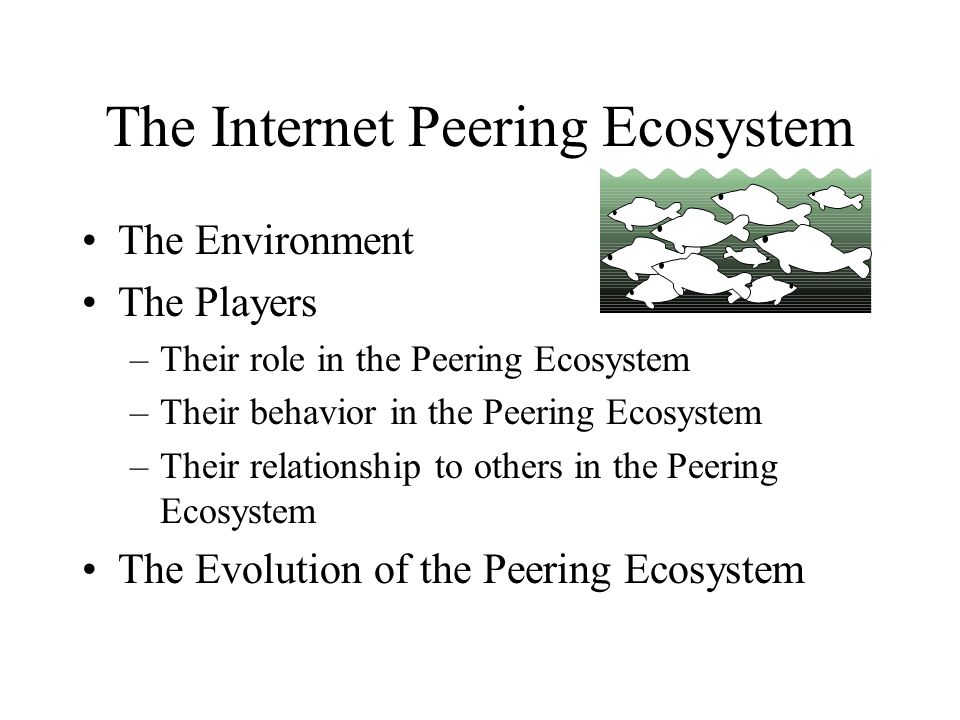 The Internet Peering Ecosystem The Environment The Players –Their role in the Peering Ecosystem –Their behavior in the Peering Ecosystem –Their relationship to others in the Peering Ecosystem The Evolution of the Peering Ecosystem