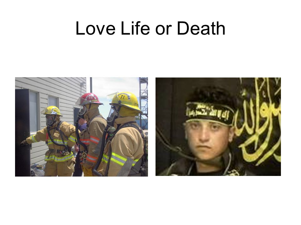 Love Life or Death