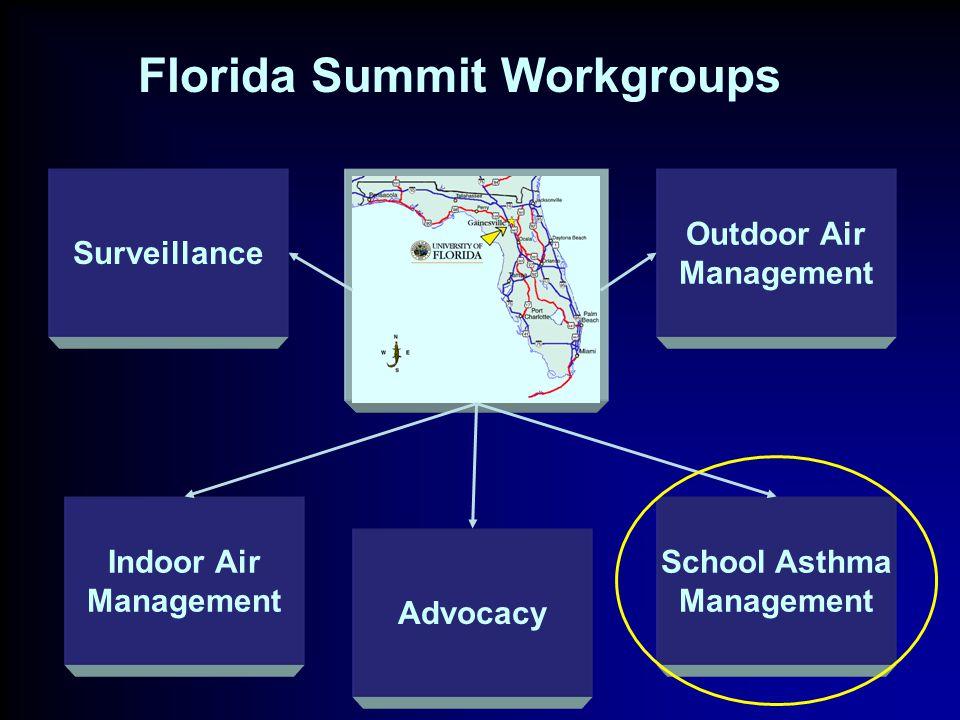 Surveillance Advocacy School Asthma Management Indoor Air Management Outdoor Air Management Florida Summit Workgroups
