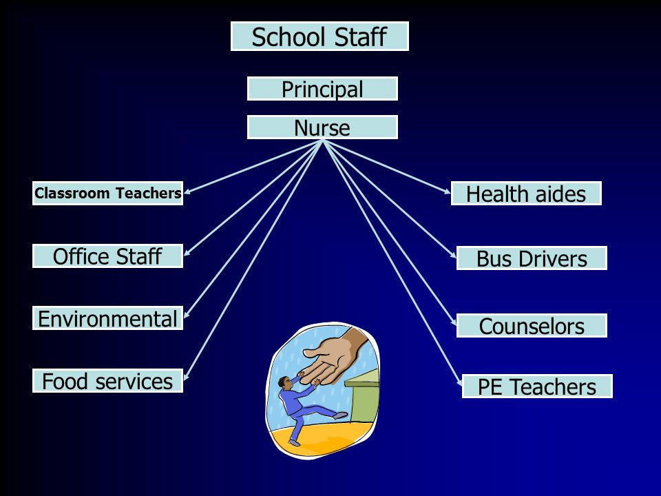 School Staff Principal Health aides Classroom Teachers Bus Drivers Office Staff Counselors Nurse Environmental Food services PE Teachers