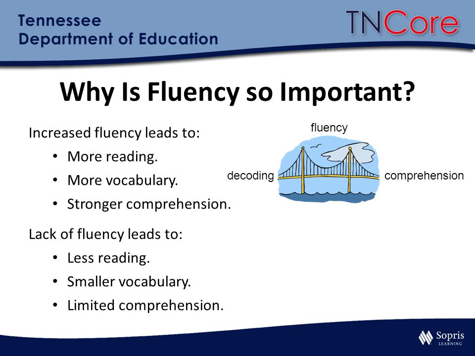Why Is Fluency so Important. Increased fluency leads to: More reading.