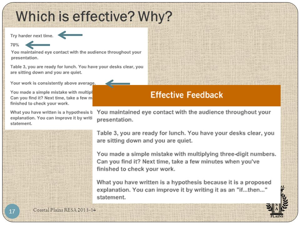 Which is effective? Why? Coastal Plains RESA 2013-14 17