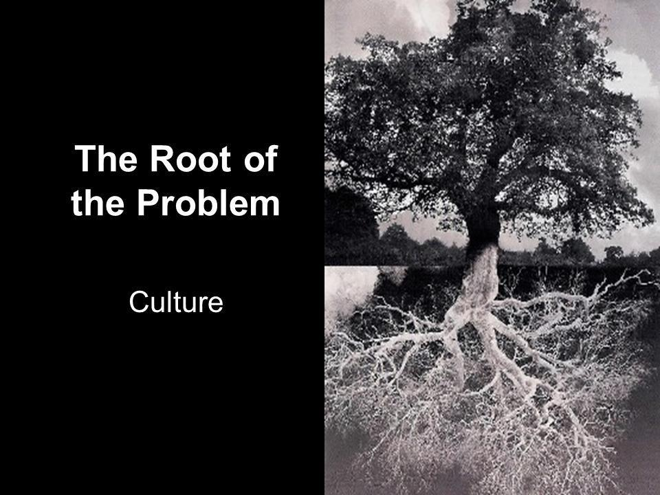 The Root of the Problem Culture