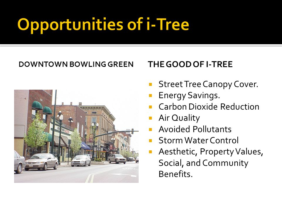 DOWNTOWN BOWLING GREEN THE GOOD OF I-TREE  Street Tree Canopy Cover.  Energy Savings.  Carbon Dioxide Reduction  Air Quality  Avoided Pollutants