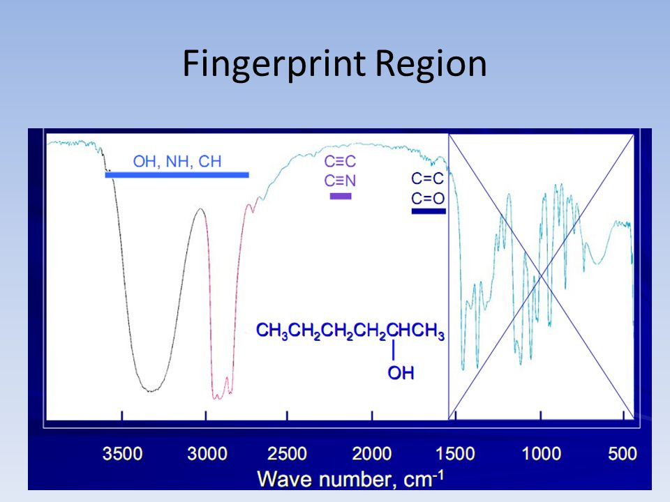 Fingerprint Region