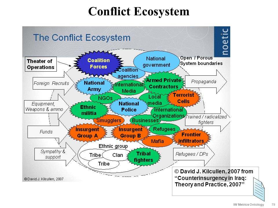"Conflict Ecosystem 79 IW Metrics Ontology © David J. Kilcullen, 2007 from ""Counterinsurgency in Iraq: Theory and Practice, 2007"""